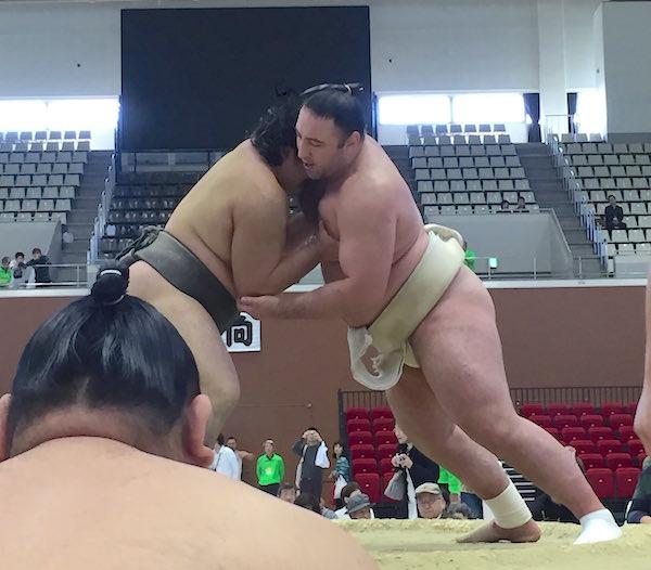 kawamoto-butsukari-tochinoshin