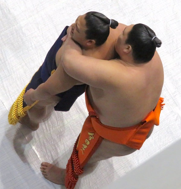 yago-wakatakakage-love