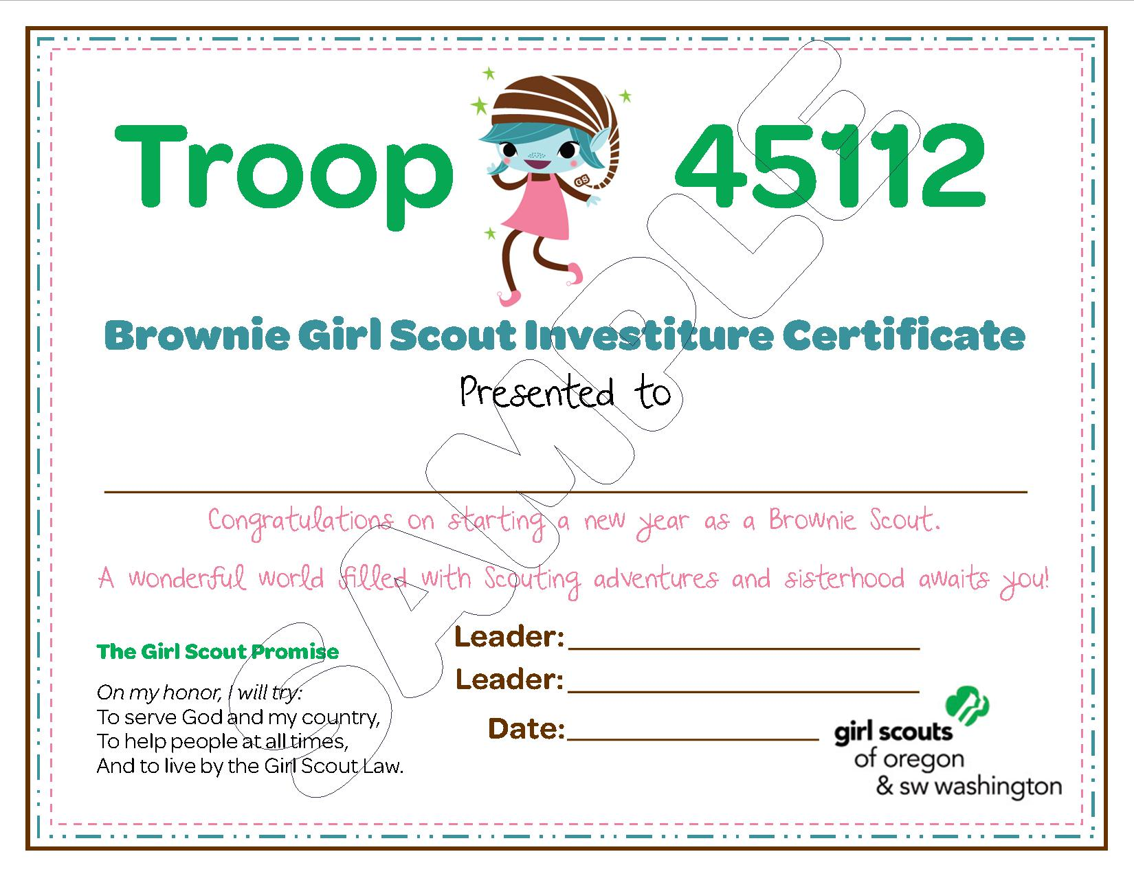 Brownie Scout