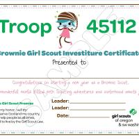 Brownie Troop Investiture
