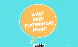 What does PLATINUM GAY mean?