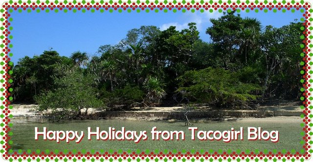 Happy Holidays from Tacogirl