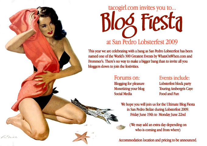 Tacogirl's blog fiesta ad for 2009