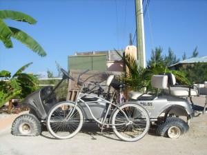 Dicks bike