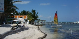 Caye Caulker shoreline