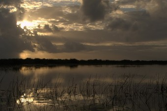 Sunrise over the lagoon at Crooked Tree Wildlife Sanctuary - copyright by Kate Joynes-Burgess