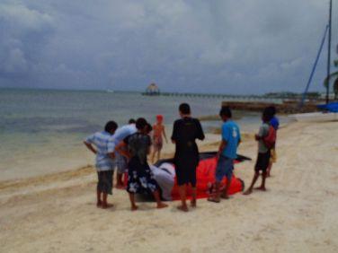 Kite Surfing Ambergris Caye Belize