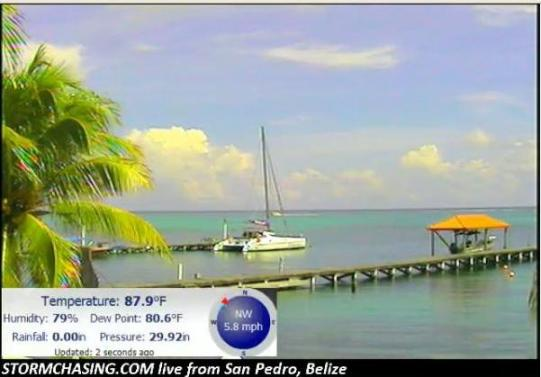 san pedro belize webcam