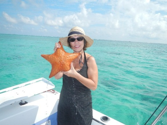 belize marine life