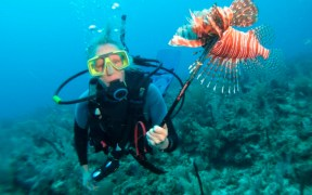 lionfish belize