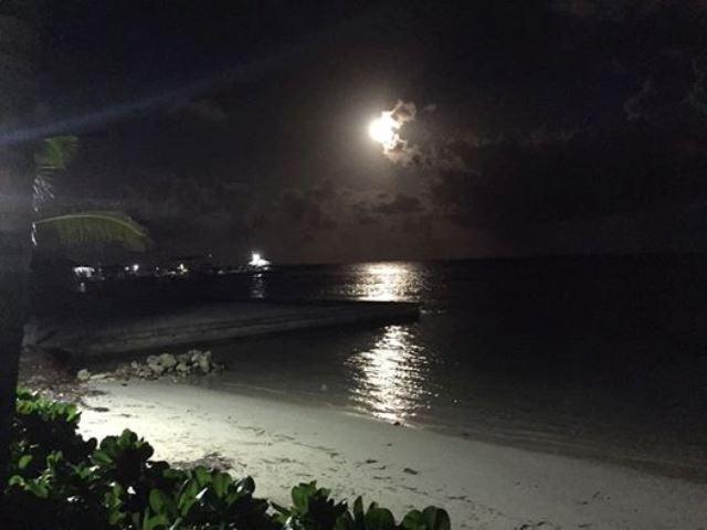 caribbean sea belize
