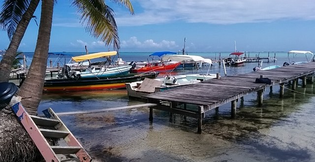 Wondering what to do in Belize?