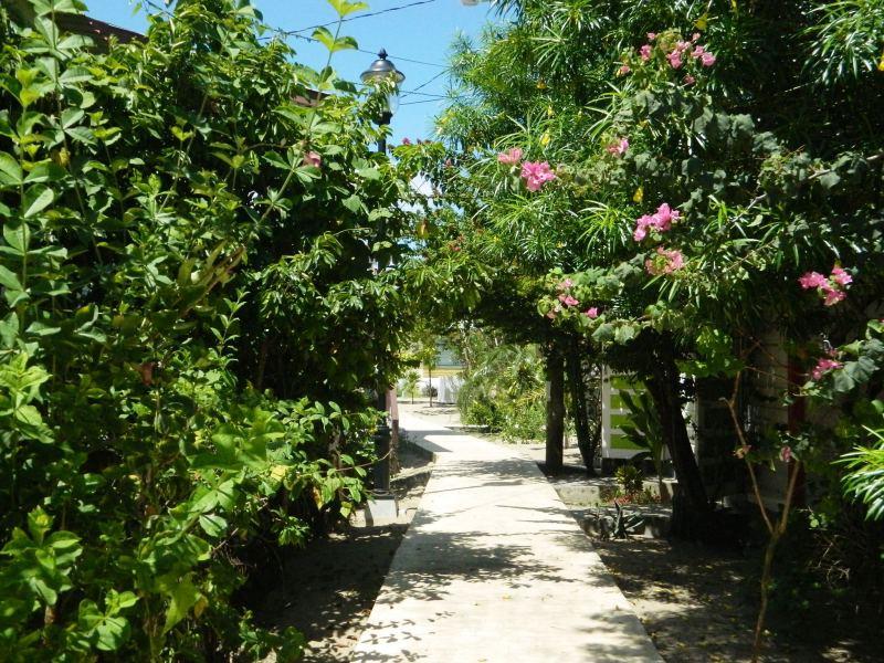 walking in placencia belize