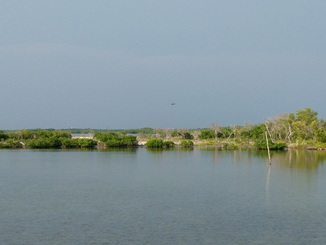 Lagoon side of Ambergris