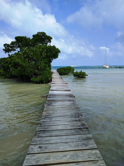 Walking to Caye Caulker Airport