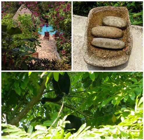 Maya Artifacts and Monkeys at Ian Andersons Caves Branch Jungle Lodge