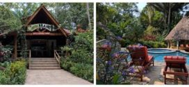 Jungle Play – 4 Amazing Tours Plus 2 Unofficial Ones