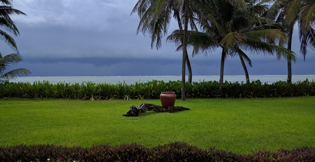 411 on Tropical Storm Earl