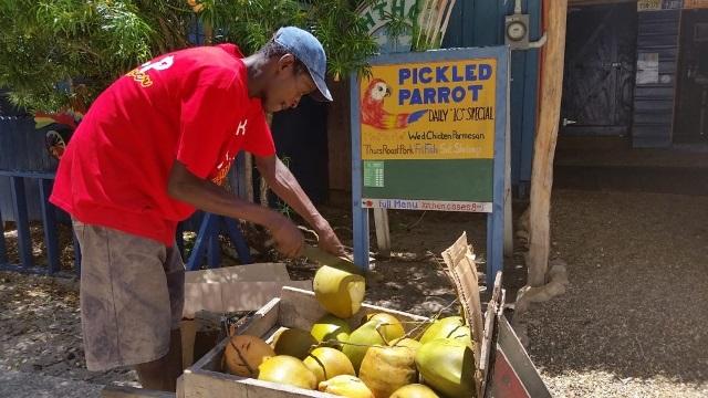 Pickled Parrot Placencia Belize