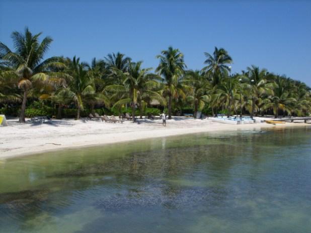 Belize OIl