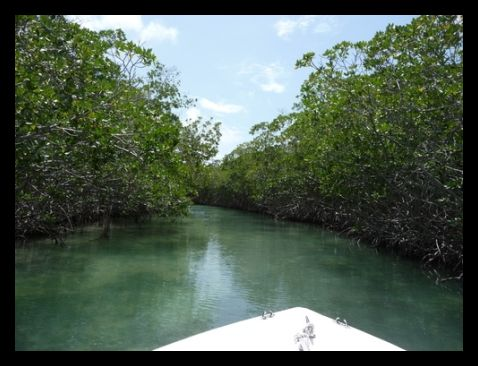 How Big Is Ambergris Caye