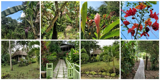Maya Mountain Jungle Lodge San Ignacio Belize