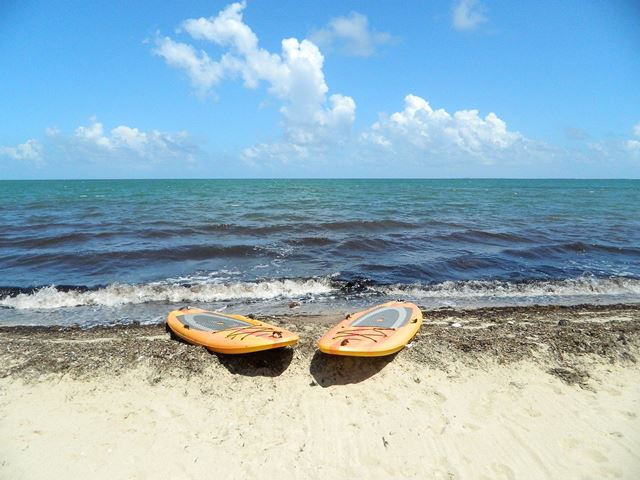 Paddleboarding in Placencia
