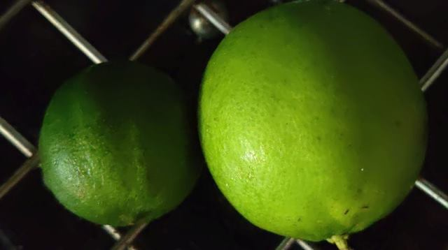 Belize produce