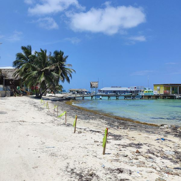 Beach by San Pedro Belize Express Water Taxi