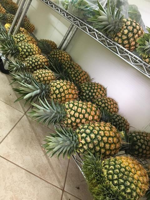 Local Organic Belize Pineapples