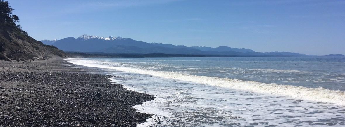 Ocean for Ocean Actions