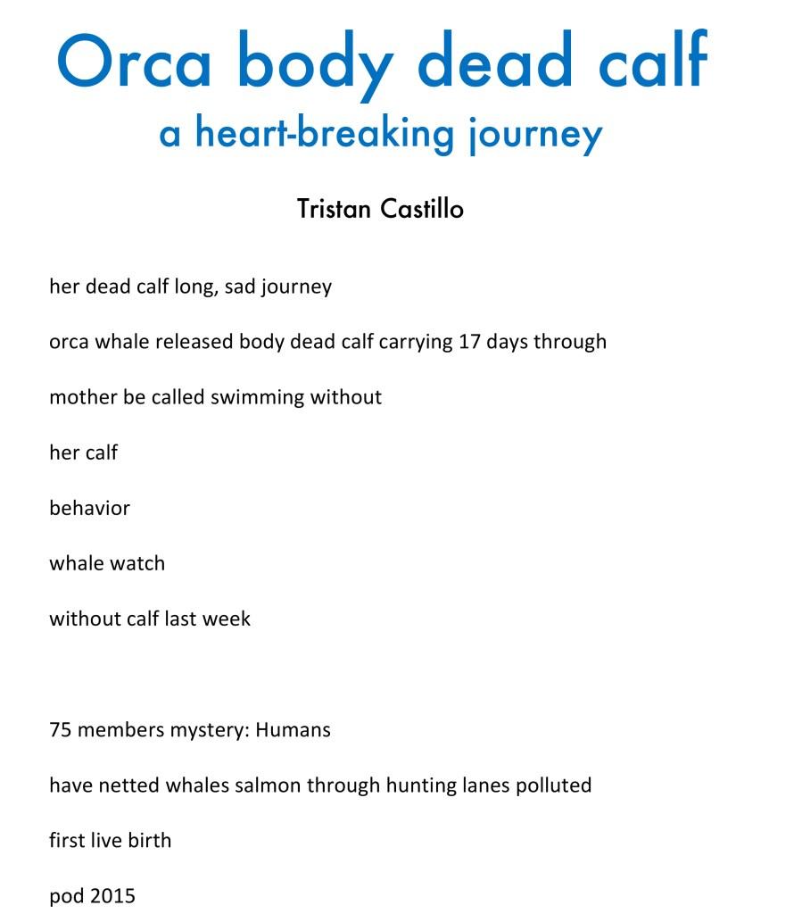 Tristan Castillo - Orca Body Dead Calf