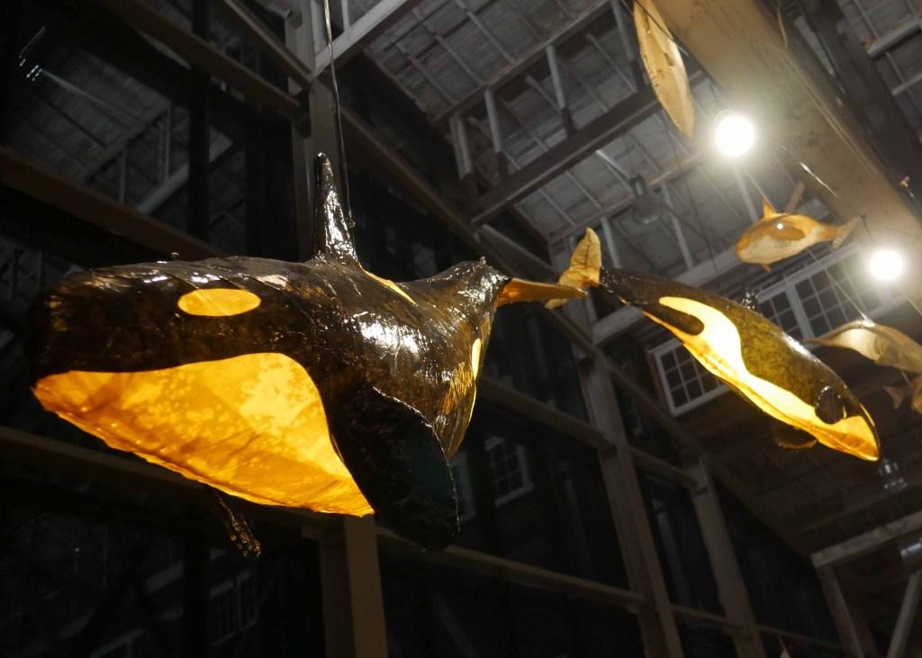 orca lantern