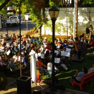 "TACO Pop-Up Orchestra on the ""Green"" a Huge Success!    Summer 2016"