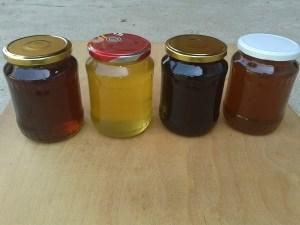 Am exportat miere