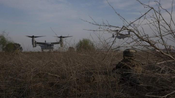 U.S. Marine - MARPAT camo blends well in brush.
