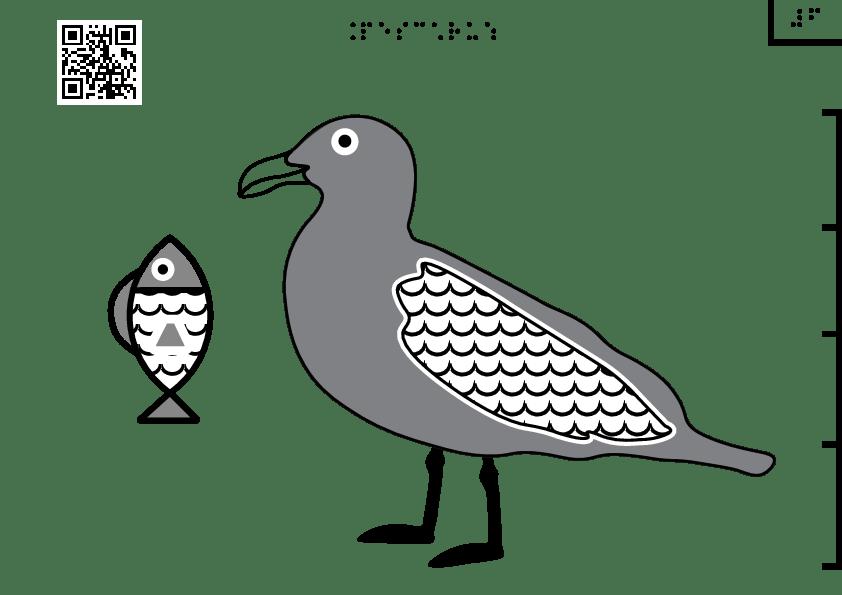 Pescăruș