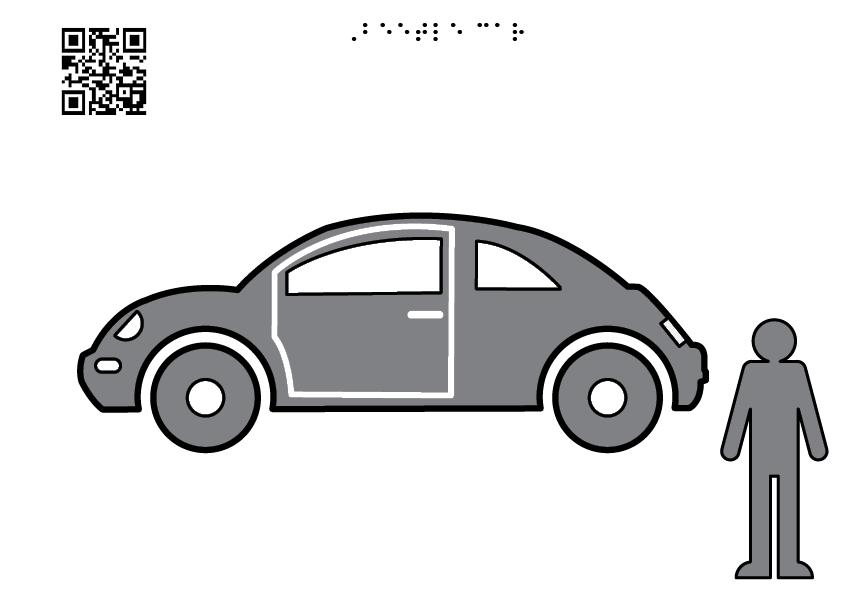 beetle bug car