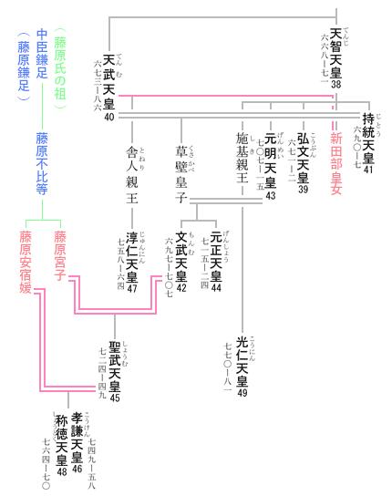 称徳天皇 系図