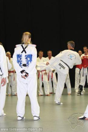 taekwondo-berlin-wedding-reinickendorf-tigers-203
