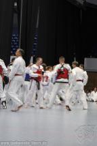 taekwondo-berlin-wedding-reinickendorf-tigers-218