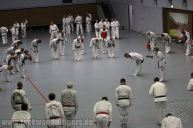 taekwondo-berlin-wedding-reinickendorf-tigers-242