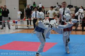 Die Taekwondo Tigers Berlin auf dem Thüringer Hauptstadtpokal 2016 in Erfurt