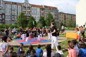 kampfsport-show-wedding-020