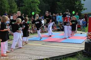 kampfsport-show-wedding-032