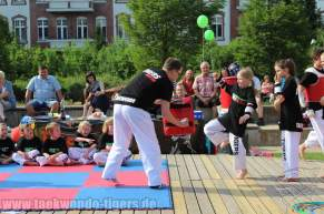 kampfsport-show-wedding-042