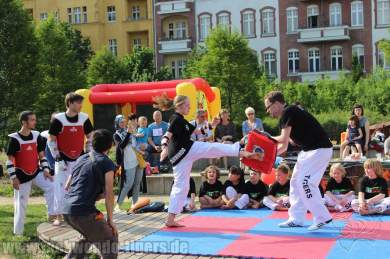 kampfsport-show-wedding-055