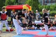kampfsport-show-wedding-060