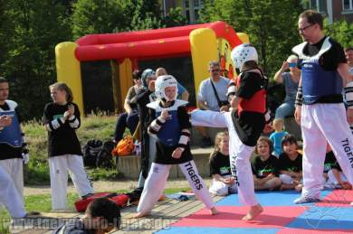 kampfsport-show-wedding-074