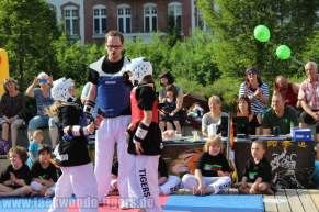 kampfsport-show-wedding-076